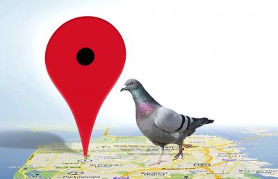 Google Local Pingeon. ¿Qué es y como incluirlo en mi estrategia SEO?