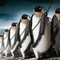 Cómo evitar una penalización desde Google Penguin con Linkbuilding